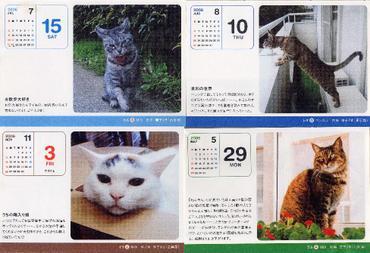 2006cats1_1