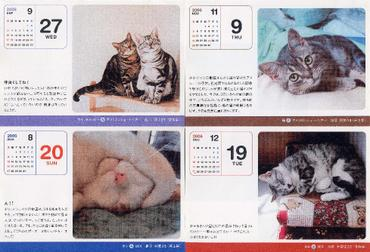 2006cats2_1