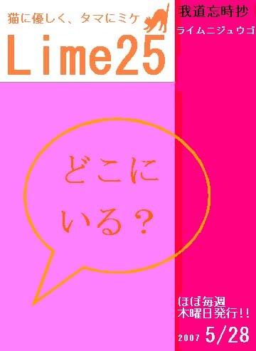 Lime070528