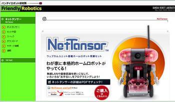 Nettansor_5
