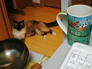 シンギングボウルとマグカップと寝そべるあたし